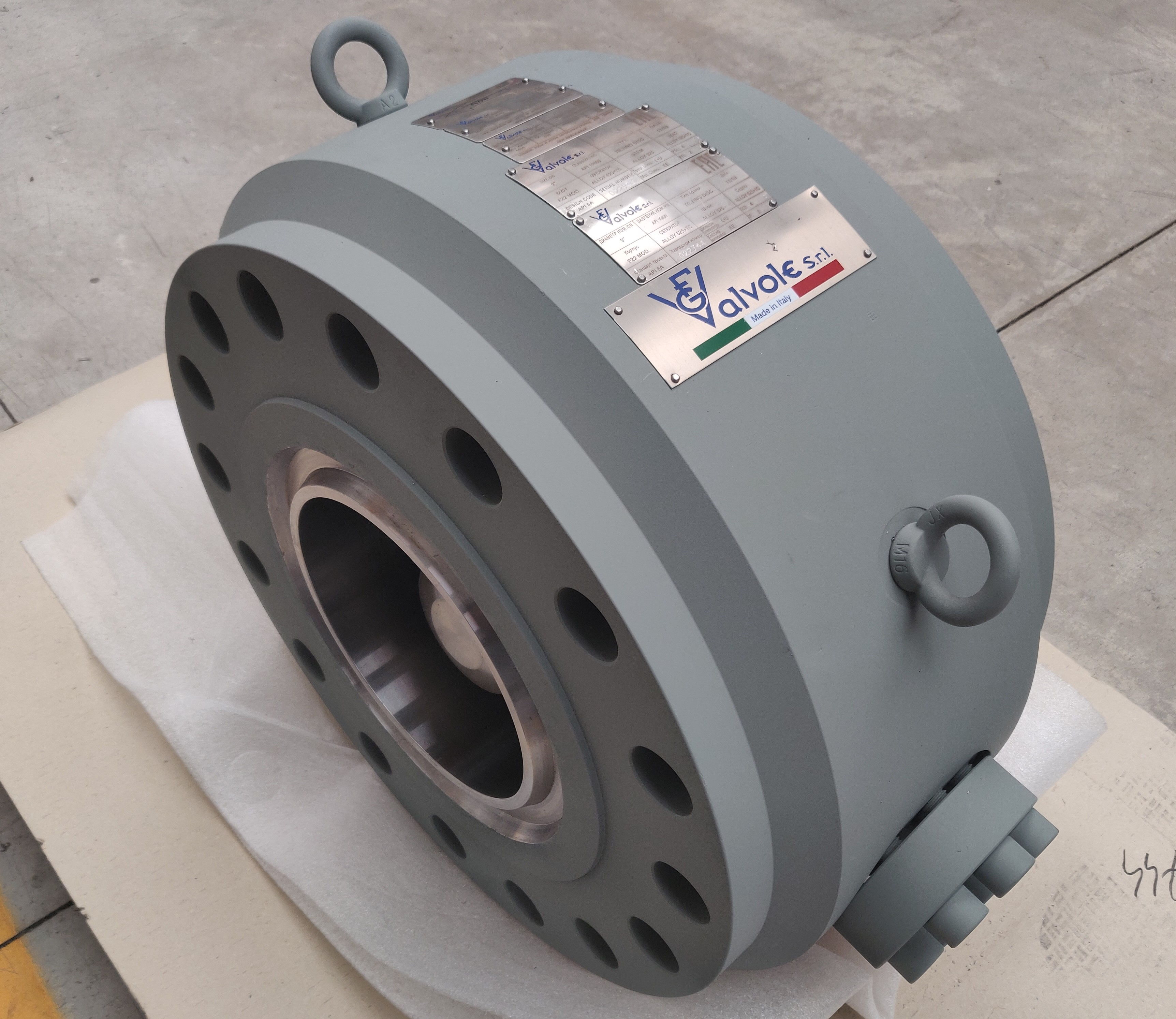 180205 4th Injection Tilting Disc Wafer Check 9 inch API 10000 (9)