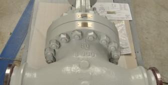 190140 Globe 8 inch 900 - Chevron Nigeria (5)